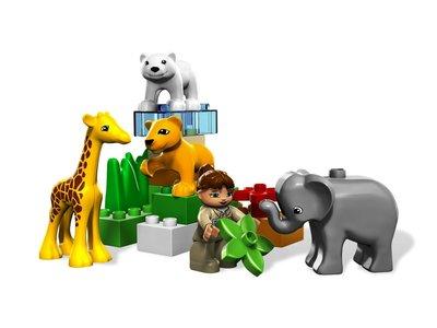 Baby dierentuin met nieuw model dieren